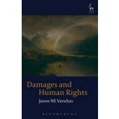Damages and Human Rights - ISBN 9781849463720